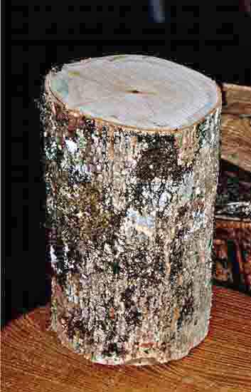 Ou trouver des sabots en bois elegant mules femmes bois for Ou trouver du bois flotte montpellier